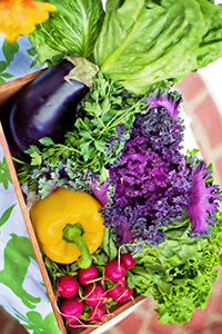 vegetable-organic